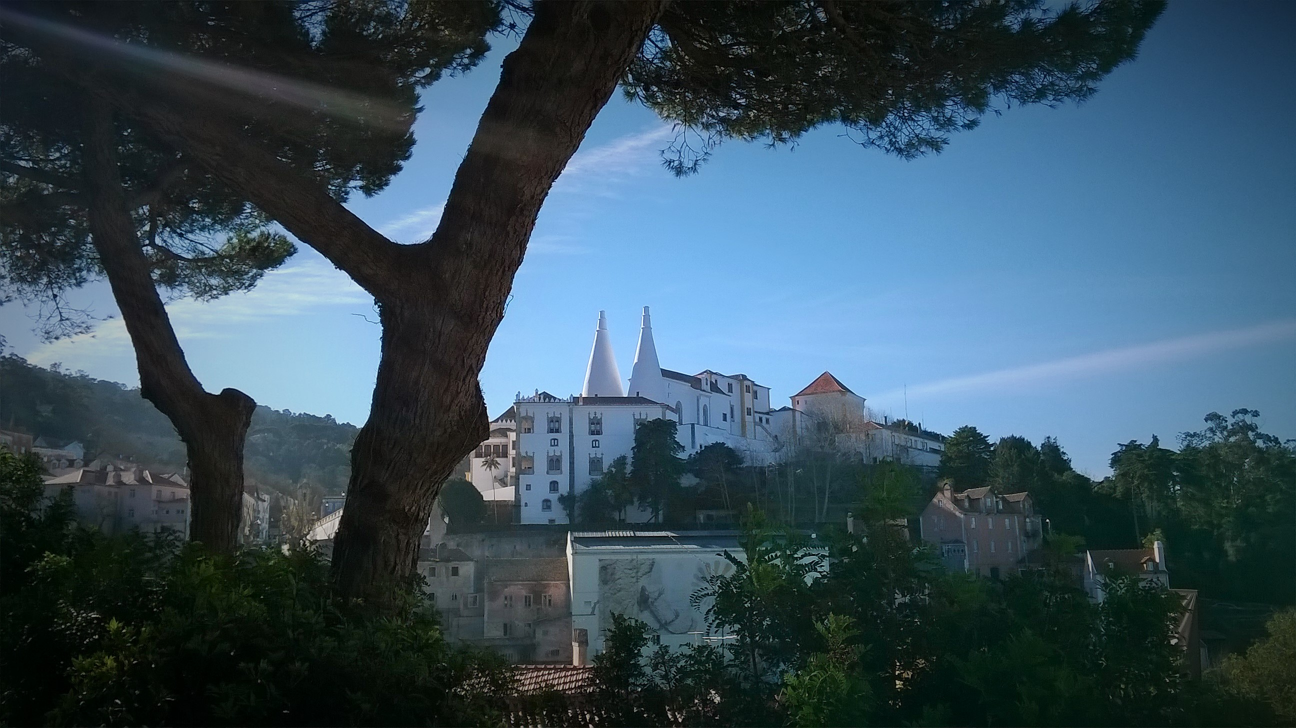 VI International Seminar on Fairytale and Storytelling Therapy - Sintra 2021